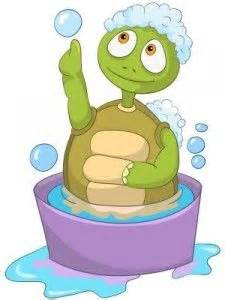 turtle in the bathtub song i a turtle his name is tiny tim substitute