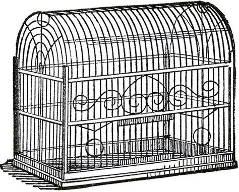 cage of vintage bird cage image the graphics