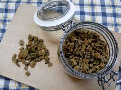 cibo per cani fatto in casa croccantini per gatti fatti in casa ricette da cani