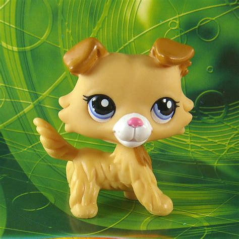 lps dogs and cats lps dogs cats collection on ebay
