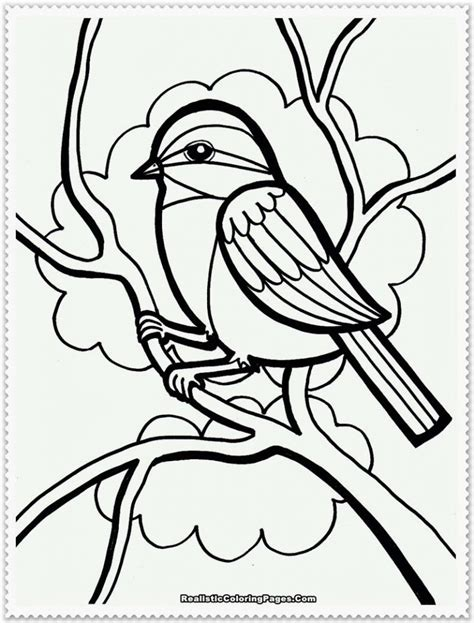 amazing birds coloring book books realistic bird coloring pages fablesfromthefriends
