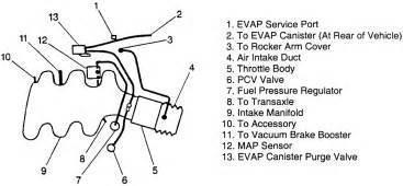 1998 Buick Century Engine Diagram Diagram Of Evap System 2002 Buick Century Autos Post