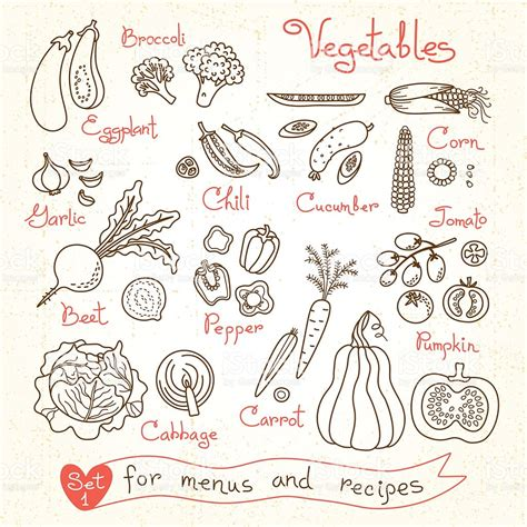 Moel Rizette Package set drawings of vegetables for design menus recipes and