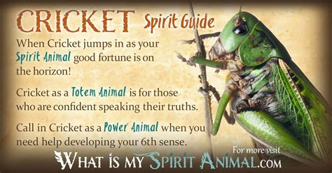 cricket grasshopper symbolism meaning spirit totem power animal