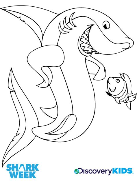 coloring pages of fish and sharks sharks discovery kids