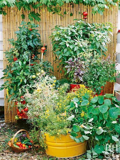 Vegetable Gardens Grasscity Forums Vegetable Garden Forum