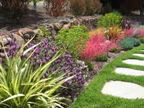Flowers Santa Cruz Ca - drought tolerant