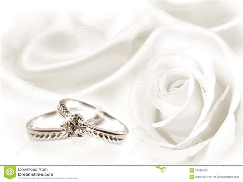 wedding rings and white stock photos image 37495473