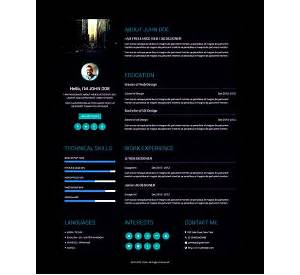 60 resume templates for graphic designer free download sample 17 infographic resume templates free download yelopaper Choice Image