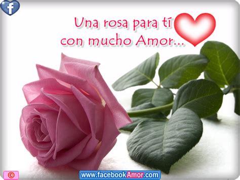 imagenes mil rosas para ti una rosa para ti amor im 225 genes bonitas para facebook