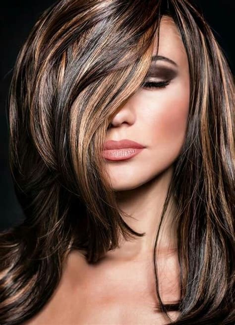 fall highlights for brown hair best 25 dark fall hair colors ideas on pinterest fall