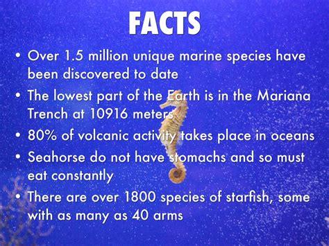 marine biologist by amanda glegg