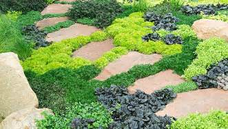 Smart Living Patio Set 6 Ways To Use Groundcovers