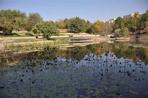 Jerusalem Botanical Gardens Biodiversity At Jerusalem Botanical Gardens Israel Tours