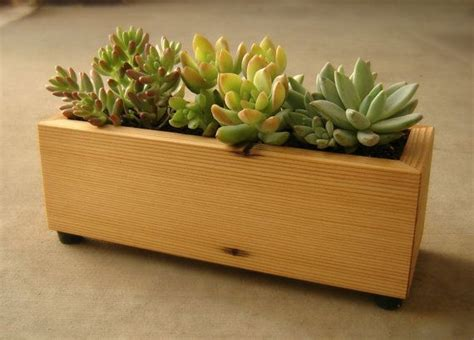 Planter Box Soil by Succulent Planter Box In Recycled Cedar With Gravel And