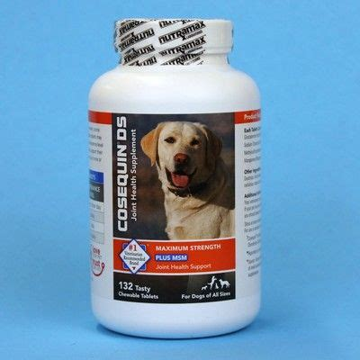 cosequin ds for dogs cosequin ds maximum strength for dogs plus msm vetrxdirect