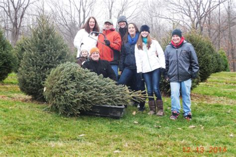 100 cut your own christmas tree farm where to cut