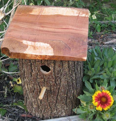 Diy Decorative Birdhouses Ideas Bird Ideas