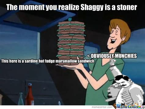 how long should you feed shag feed supplement shaggy is a stoner maaaaan by emiry meme center
