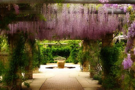 garden botanical gardens boise garden for your inspiration wpmea org