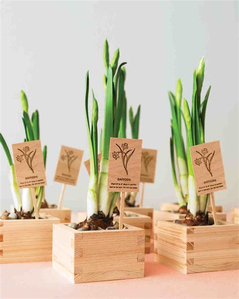 wedding shower favor ideas martha stewart floral and plant favors to diy for your big day martha stewart weddings