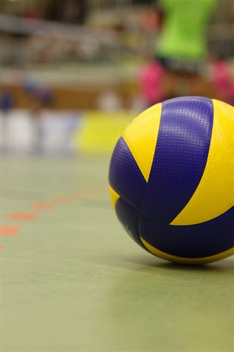 Net Voli Volley Net Mikasa sport 183 free photo on pixabay