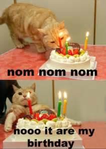 Office Birthday Meme 100 Ultimate Happy Birthday Meme S My Happy