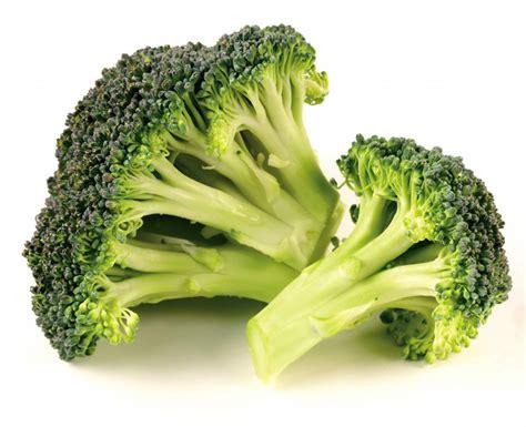 alimenti che favoriscono la diuresi ecco gli alimenti che accelerano il metabolismo ricette di