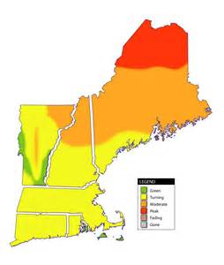 Fall Foliage Map New England by Maine Fall Foliage Map Related Keywords Amp Suggestions