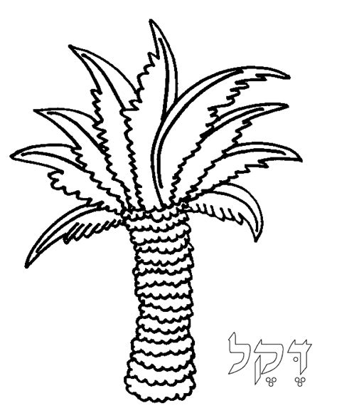 date tree coloring page sabal palm coloring page coloring pages