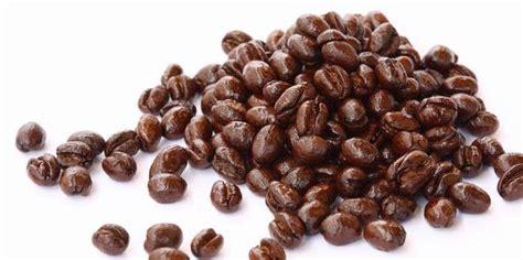 Biji Kopi Arabika Manual Brew Yukiro Cooperative kopi luwak lanang jpw coffee