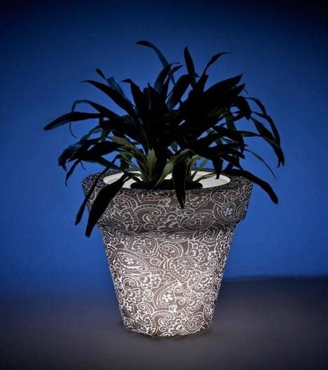 glow in the plants led light pots plant a colorful glow in the garden