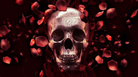 rose petal skull free wallpaper on behance
