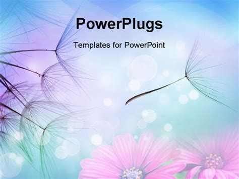 beautiful powerpoint template beautiful abstract flying dandelion seeds powerpoint