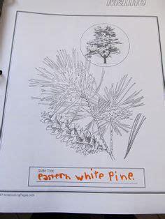 sarah plain and tall on pinterest activities common
