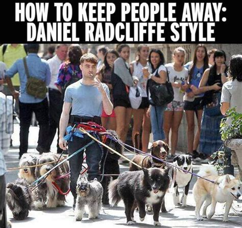 How Do I Keep Dogs The by How To Keep Away Daniel Radcliffe Style 9buz