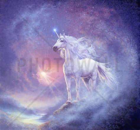 Fairy Princess Wall Mural astral unicorn fototapeter amp tapeter photowall