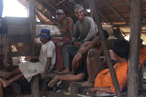 Minyak Kayu Putih Asli Pulau Buru ironi minyak kayu putih dari pulau buru oleh deliana setia