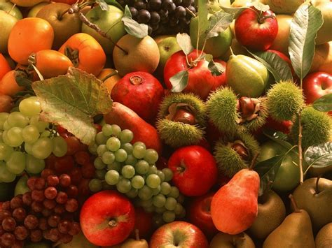 images of fruit fruits wallpapers album 2 funjunktion