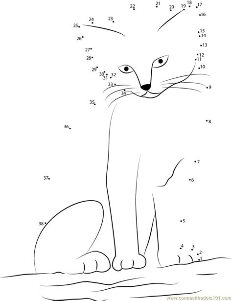 printable dot to dot cat sand cat dot to dot printable worksheet connect the dots