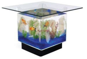 fish table tips fish tank coffee table reviews prices tips more