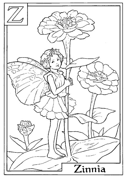 cicely mary barker flower fairies coloring pages
