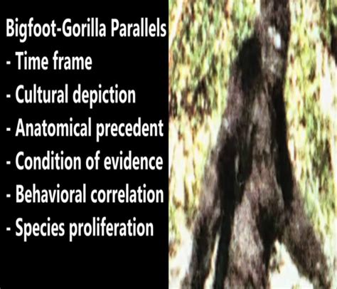 bigfoot west coast a history of gorillas and other monsters in california oregon and washington state books history of bigfoot in america crypto sightings