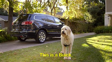 buick super bowl commercial newhairstylesformen2014com brandchannel bark to action buick goes to the dogs your