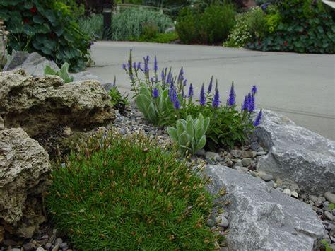 alpine rock garden alpine rock garden 20 beautiful rock garden design ideas