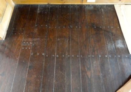 Dog Nails Hardwood Floor   Flooring Ideas and Inspiration