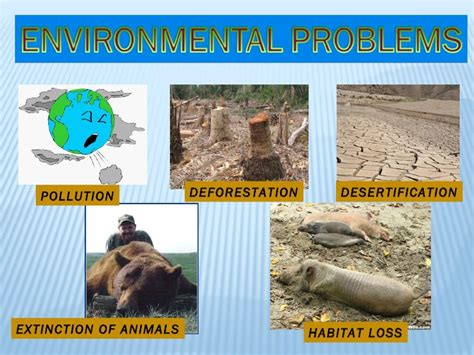 environmental challenges in africa environmental problems and solutions
