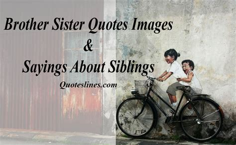 brother  sister quotes siblings sayings  images