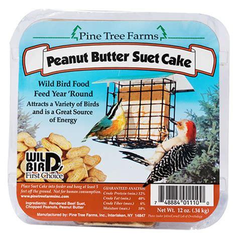 duncraft com peanut butter suet 12 cakes