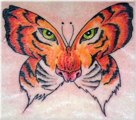 tiger butterfly tattoo 17 best ideas about tiger on white